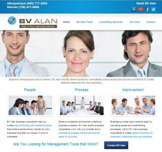 BV Alan Business Consultants Website
